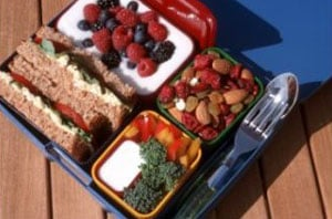 American Bento Box: Laptop Lunchboxes