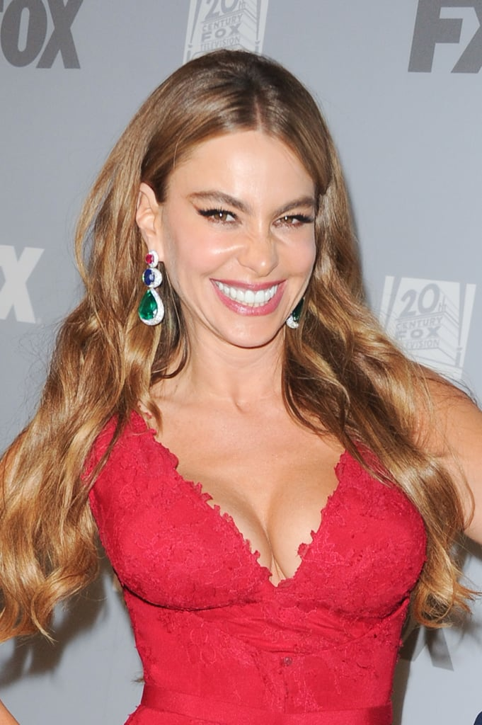 Sofia Vergara was all smiles at the Fox/FX afterparty.