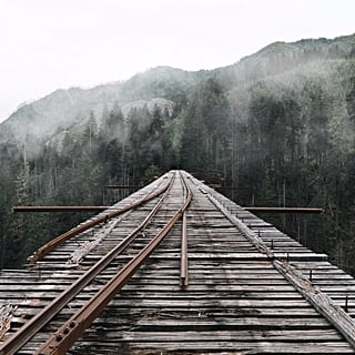 Vance Creek Bridge in Washington