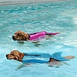 This Duo of Pups Make a Strong Case For Investing in a Mermaid Life Jacket
