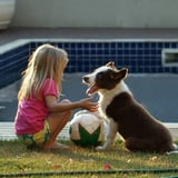 Why Kids Prefer Family Dogs to Family