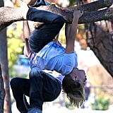 Kingston and Zuma Rossdale showed off their tree-climbing skills.