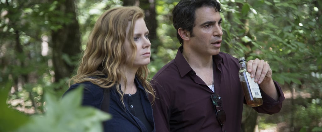 What Else Have Amy Adams and Chris Messina Been in Together?