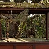 Abandoned Disney Park Photos