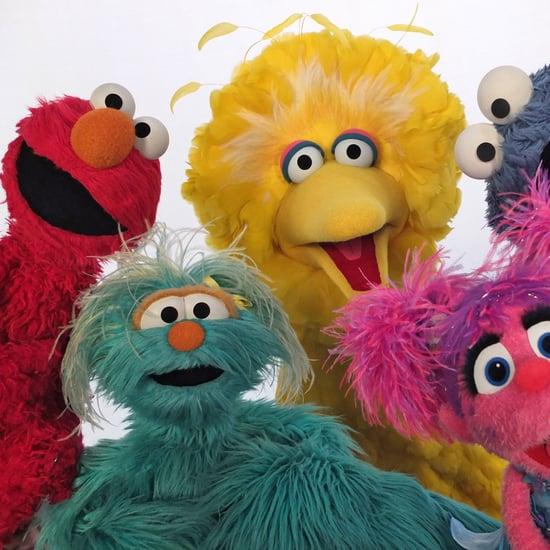 Celebrity Guest Stars on Sesame Street