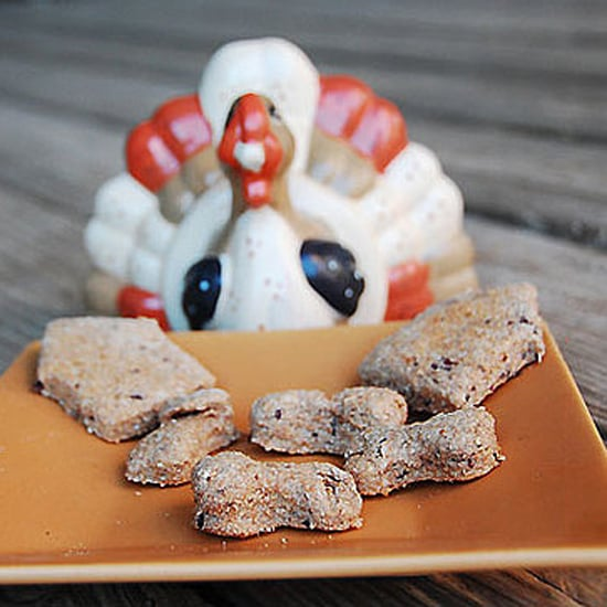 Turkey Dog Food Recipe