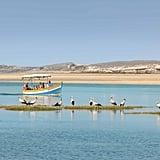 الوليديّة، المغرب