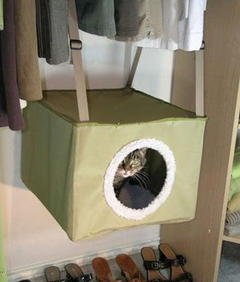 Kittywalk Closet Sleeper