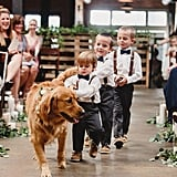 Who better to lead the ring bearers down the aisle than the best man — er, dog?
