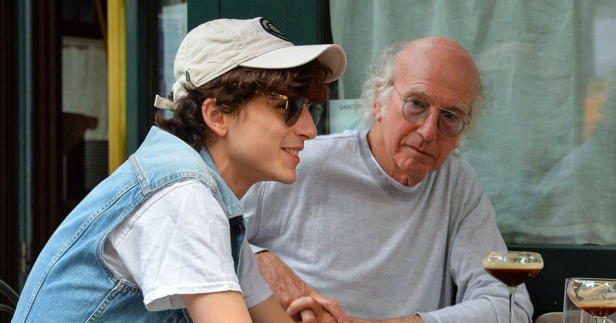 There's Just So Much to Unpack About Timothée Chalamet's Lunch Date With Larry David.jpg