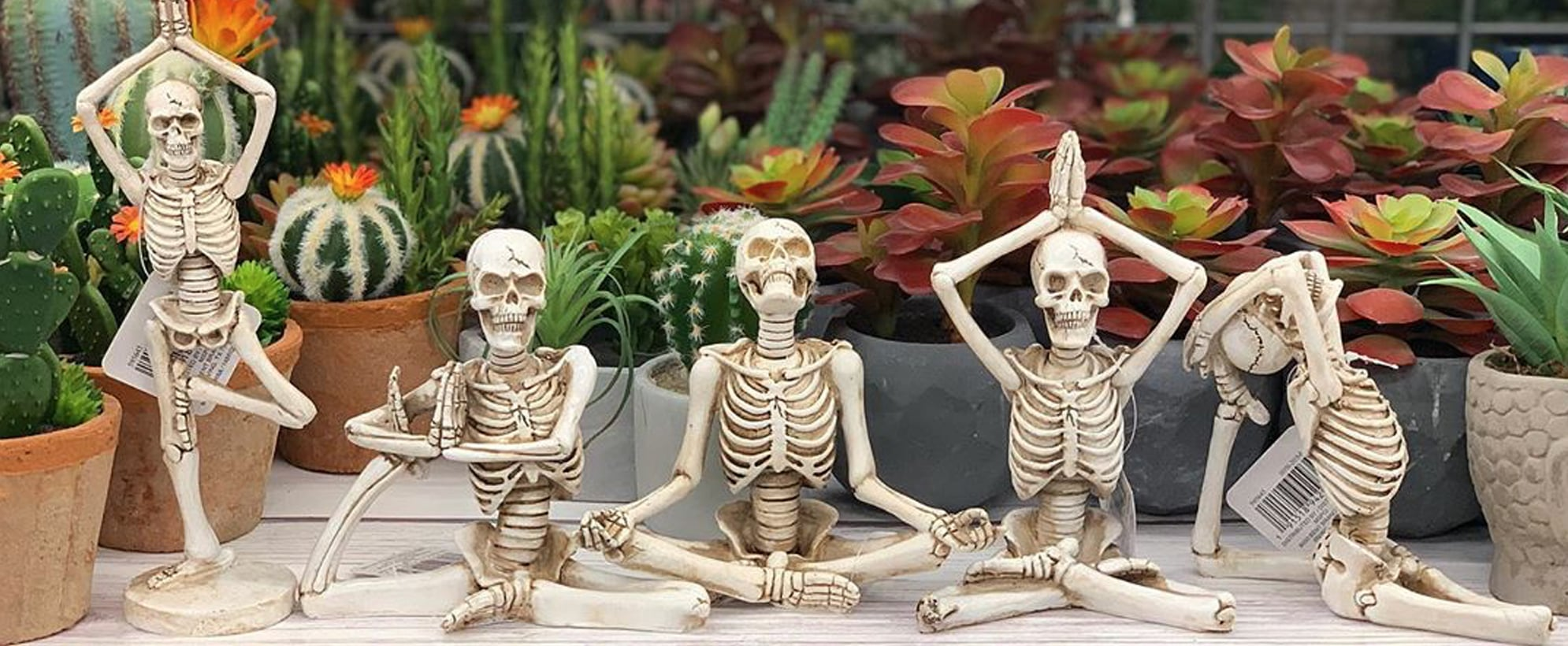 Yoga Skeletons at Michaels For Halloween
