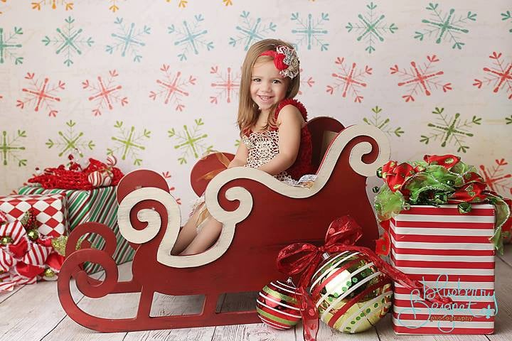 Large Sleigh Photo Prop
