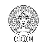 Capricorn (Dec. 22-Jan. 20)