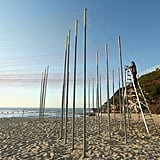 2014 Sculptures by the Sea