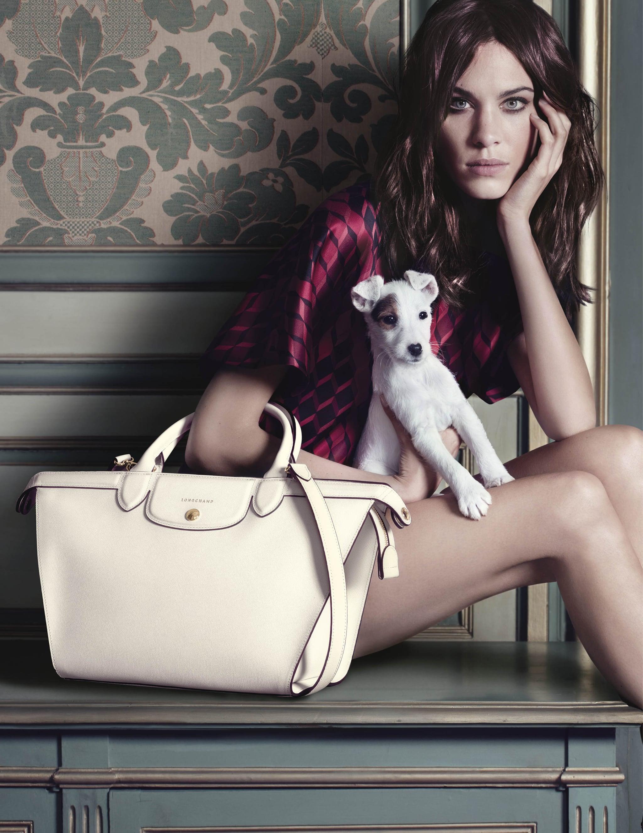 Longchamp Fall 2014