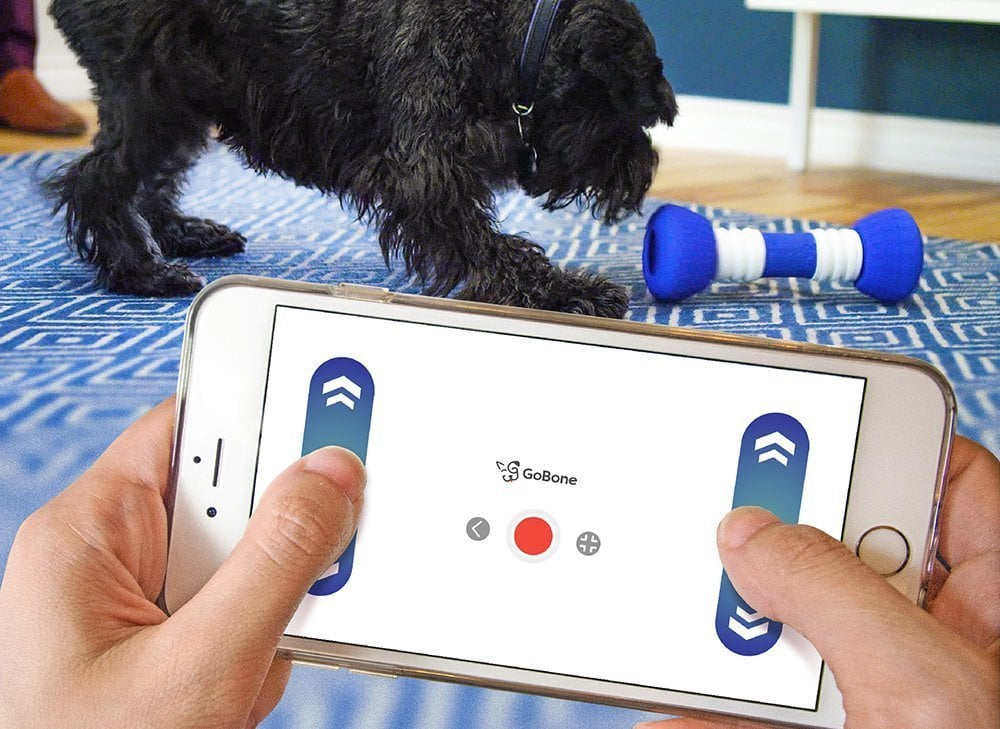 Smart Bone For Dogs