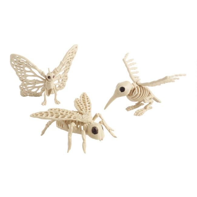 Winged Creature Skeleton Decor Set of Three