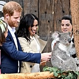 Prince Harry and Meghan Markle going in for the pat