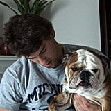 Gold Medal in Cute: More Herman (Phelps) the Bulldog