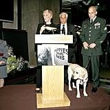 Glenn Close and Puppies Behind Bars