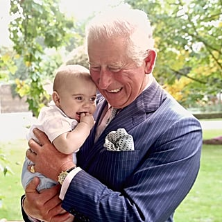 Prince Charles 70th Birthday Royal Portraits