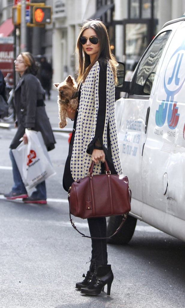 Miranda Kerr Walking With Her Dog Frankie in NYC Pictures
