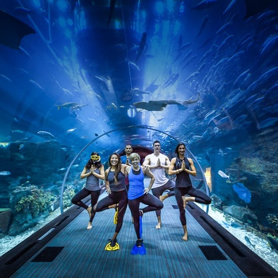 Dubai Aquarium & Underwater Zoo Yoga