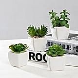 Nattol Small Artificial Succulent Plants