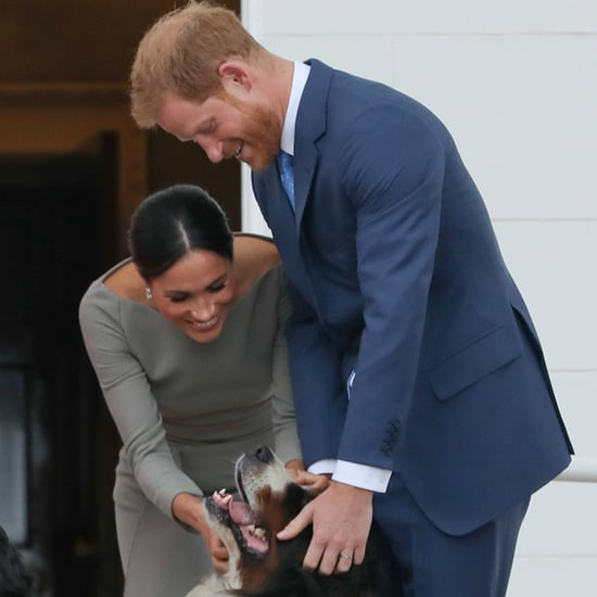 Meghan Markle and Prince Harry Get a Dog August 2018