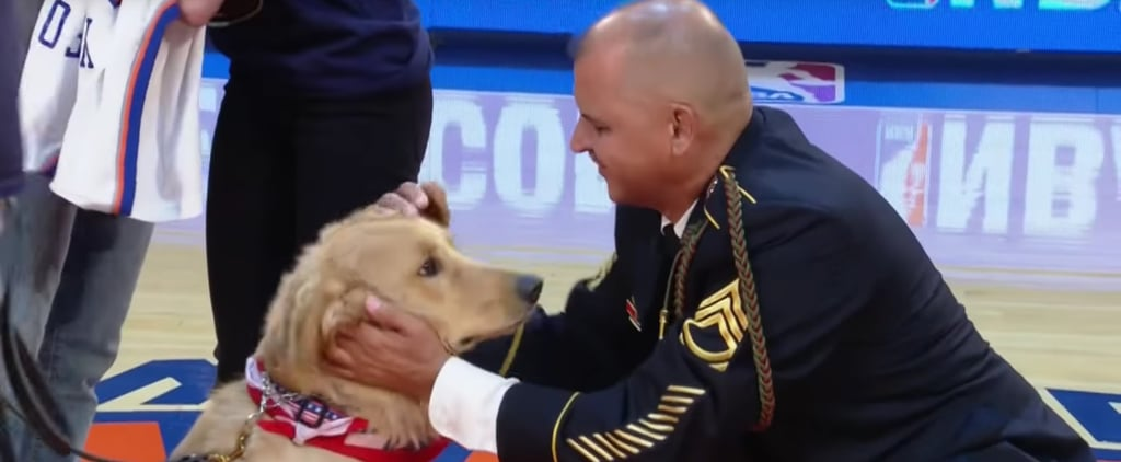 New York Knicks Give Service Dog to Army Veteran