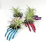 Skeleton Hand Air Plant Display