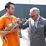 Photos of Prince Charles With Animals