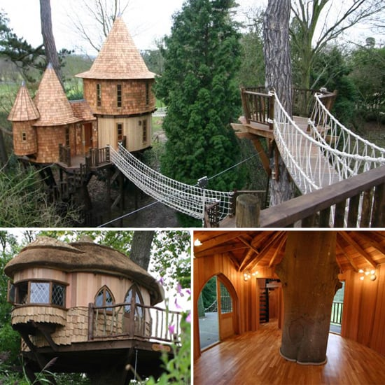 luxurious tree house. Share This Link Luxurious Tree House