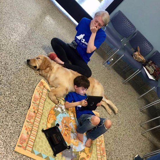 Boy With Autism Meets His New Service Dog