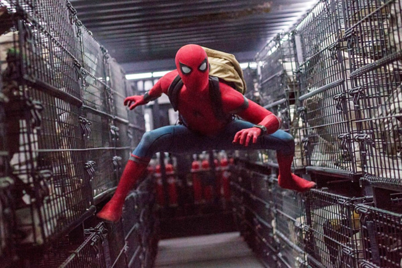 Spider-Man: Homecoming is beyond anyone's expectations