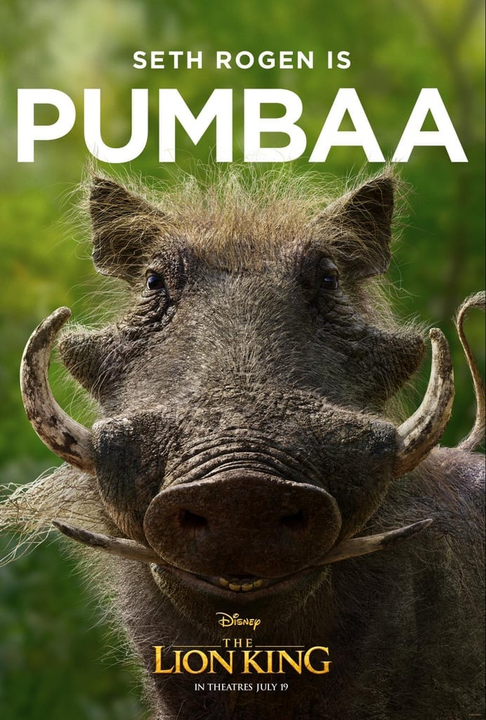 Funny Memes and Tweets About Pumbaa's Lion King Poster