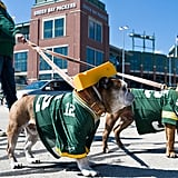 Lambeau Field Stadium Tour (Wisconsin)
