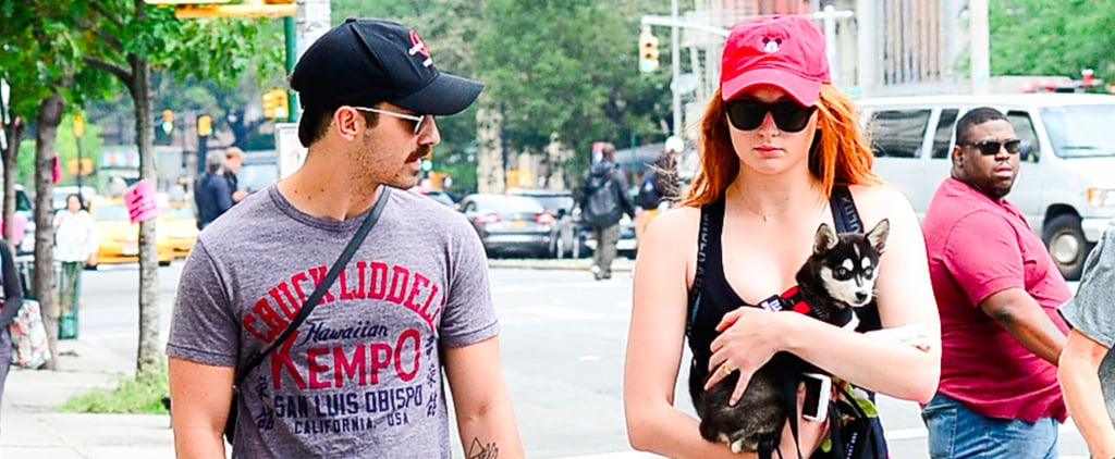 Sophie Turner and Joe Jonas Step Out With Their Very Own Little Direwolf
