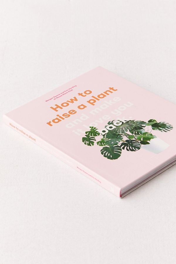 How to Raise a Plant and Make It Love You Back   Best Gifts