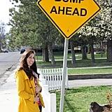 Street Sign Snapshots