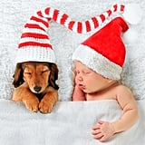 Adorable Baby and Puppy Christmas Picture Ideas