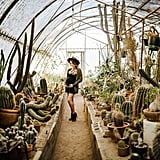 Cactus-Filled Greenhouse