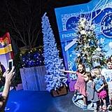 Wander the Disney Springs Christmas Tree Trail.