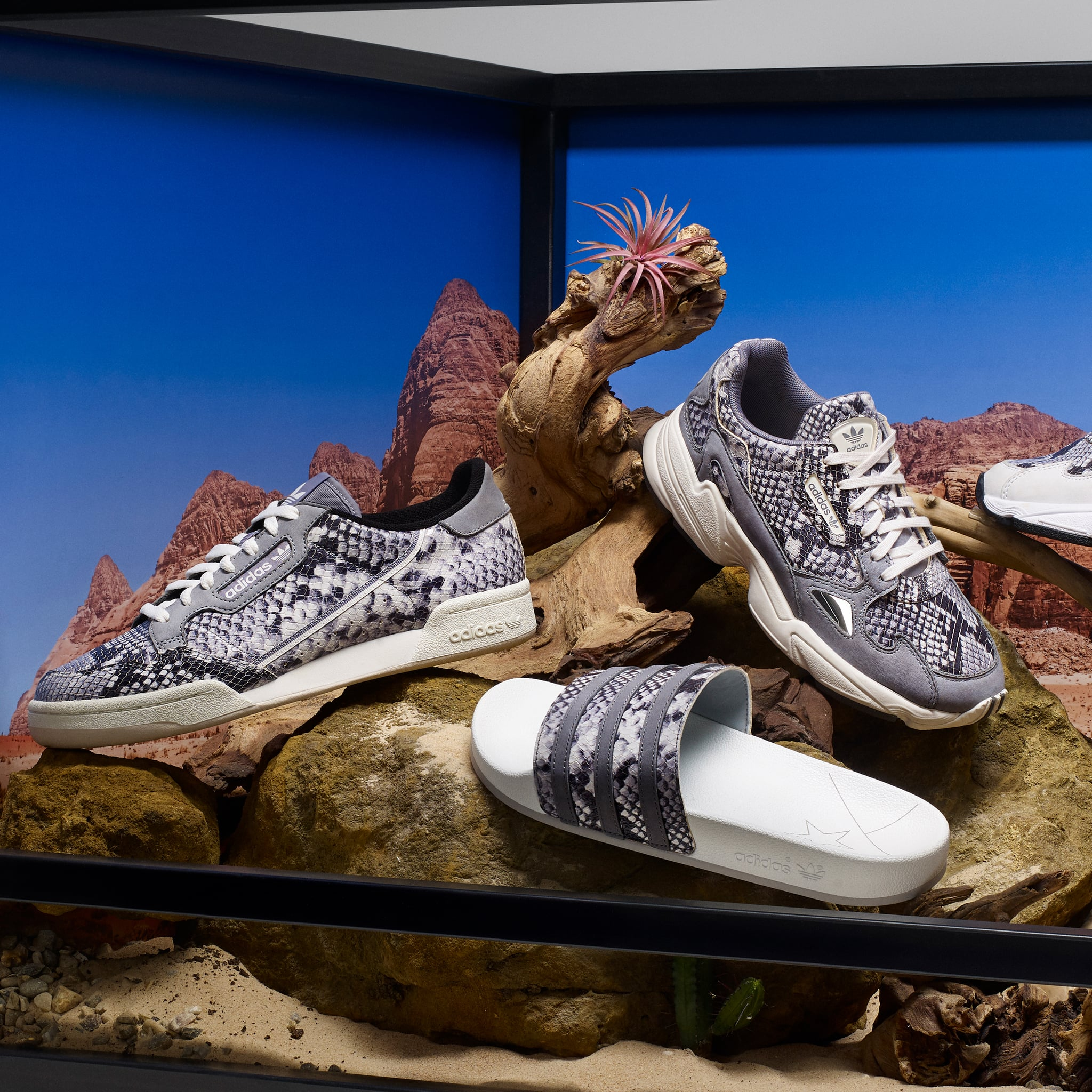 Adidas Snakeskin Sneakers Collection