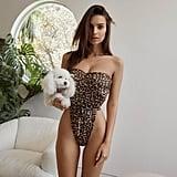 Inamorata Swim Leopard Swimsuit
