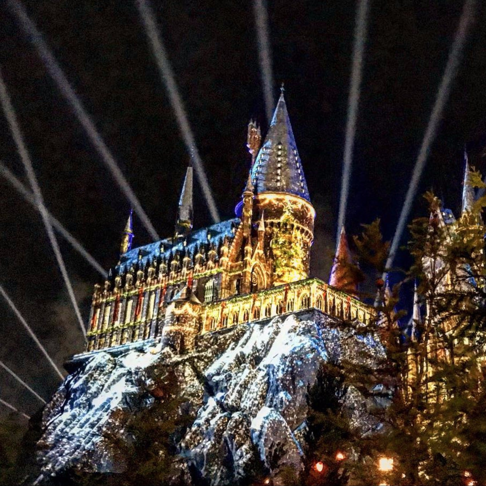 Christmas Harry Potter.Harry Potter World Christmas Photos Popsugar Family