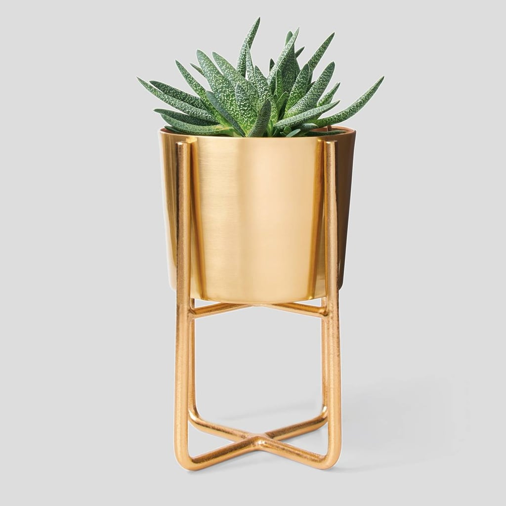 Project 62 Elevated Planter
