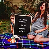 Mom's Countdown to Twins Letter Board Photo Series