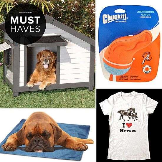 It's time to take your pet out in the sunshine for playtime! This month, POPSUGAR Pets has a collection of fantastic new pet products to amp up the Summer fun.