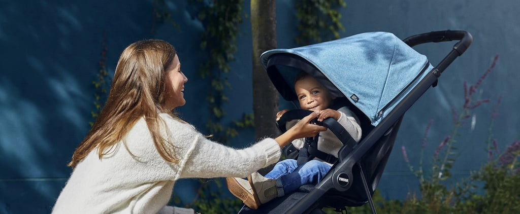 The 13 Best Baby Strollers at Every Price Point | 2020 Guide